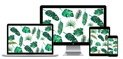 Calendario Giugno 2017 Free printable Monstera urban jungle
