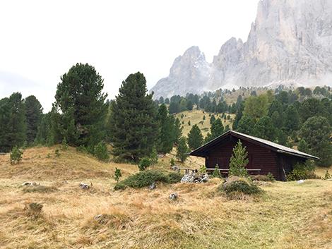 Alto Adige Dolomiti Selva Val Gardena Merano Bolzano