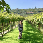 UN WEEKEND IN VALPOLICELLA TRA LE CANTINE DELL'AMARONE: BUON VINO, COLLINE E RELAX