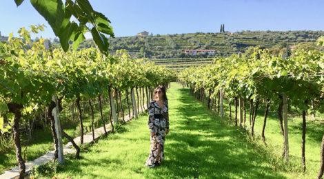 UN WEEKEND IN VALPOLICELLA TRA LE CANTINE DELL'AMARONE: BUON VINO, COLLINE E RELAX