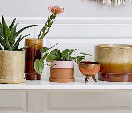 Dust Rose ecommerce eshop negozio online lifestyle