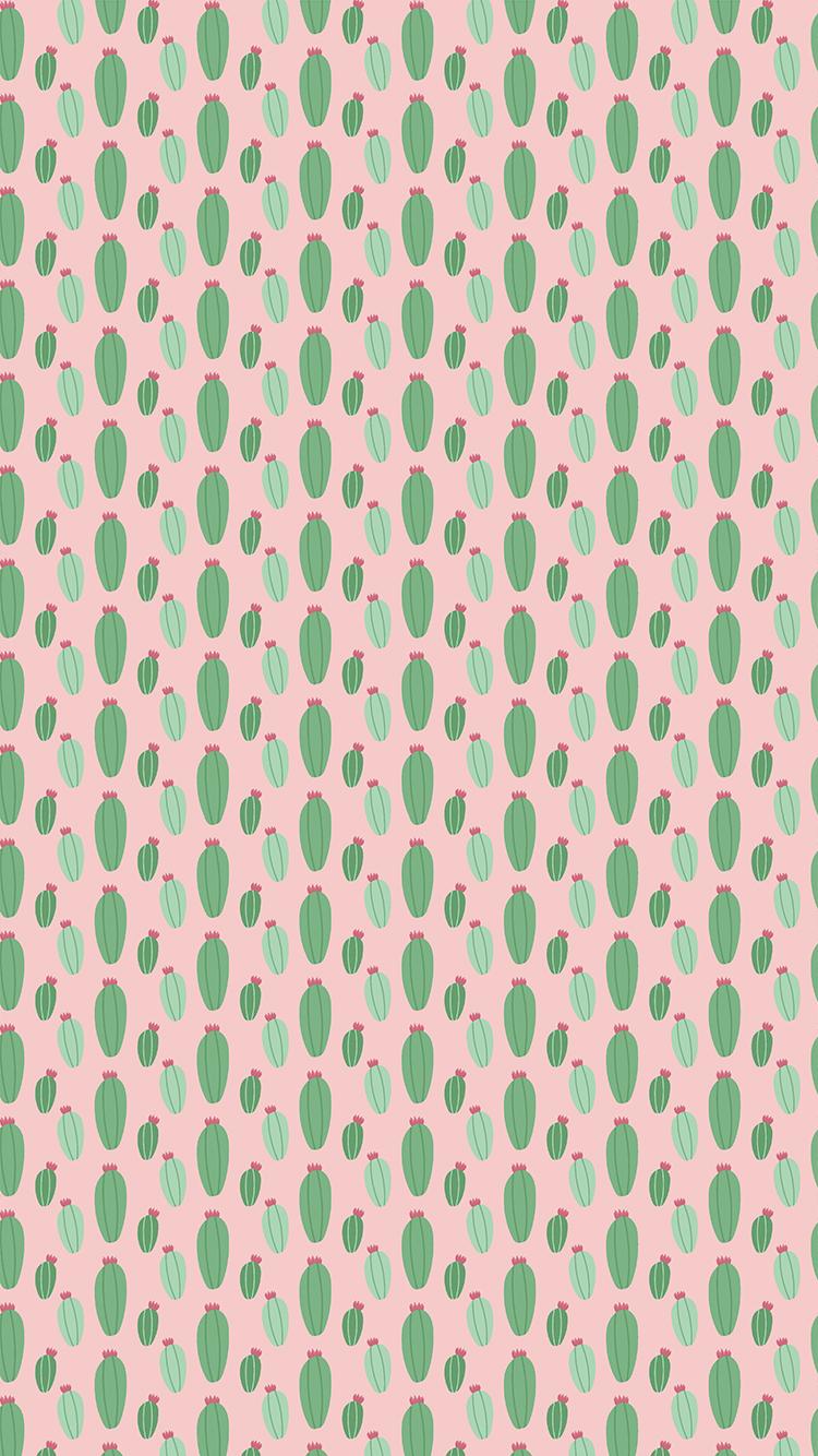 Scarica Gratis Calendario E Sfondi Di Luglio Con I Cactus
