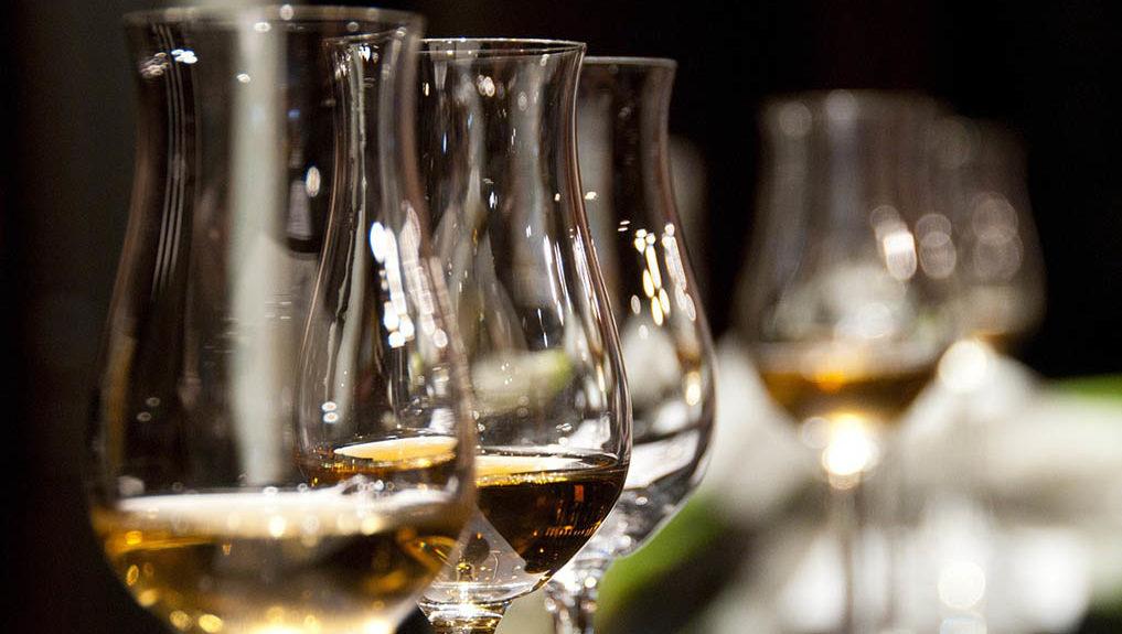 Barbaresco vino vini tradizionali italiani