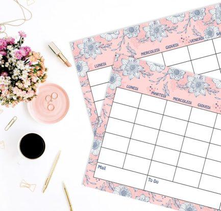 Spring Suite 2019 calendario sfondi primavera