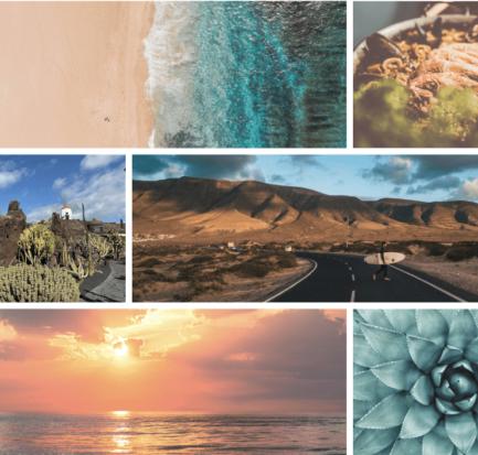 Cose preferite di Lanzarote Style Things gennaio