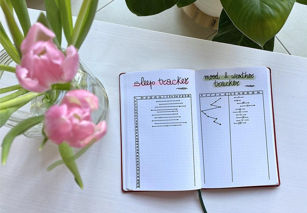 Bullet Journal Mood Tracker Habit Life Planner