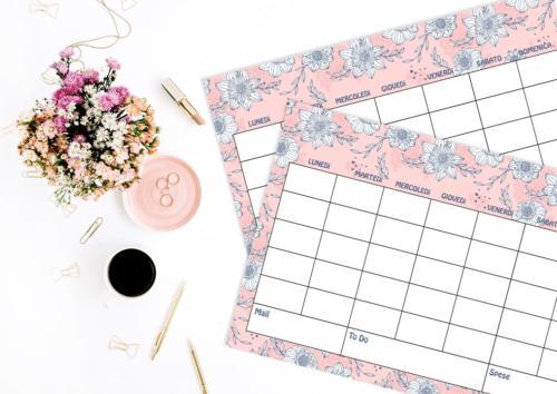 Spring Suite - Pink